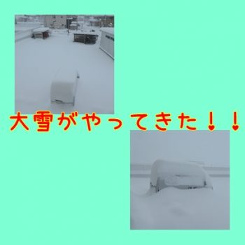 大変、大雪だぁ~
